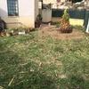 Quitar césped y jardinera