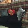 Cambiar el tapizado del sofá