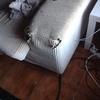 Arreglar parte  de un sofá por mordedura perro, esquina pequeña tengo cojín de misma tela