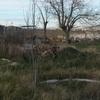 Rerirada escombros parcela