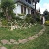 Propuestas de replantear jardín