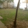 Acondionar zona jardin, césped artificial u otras posibilidades