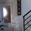 Quitar gotele y pintar en toda la casa