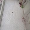 Instalar Carpintería Aluminio (Obra Nueva) Terraza de 20m