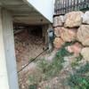 Dos muros compuestos 20 m2