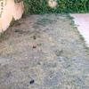 Instalar cesped artificial sobre tierra