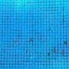 Reparar Juntas de Piscina de 10 m por 5 m (Azulejos se Caen)