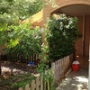 Solar patio traser lateral y jardin delantero con desagues y arquetas