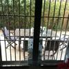 Aislar puerta salon