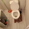 Instalar ducha en espacio reducido ( se quitaría el lavabo)