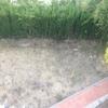 Reformar el jardin, alella, barcelona