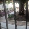 Plantar tepes de césped