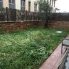 Podar el jardín