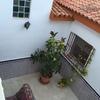 Techado de patio en san vicente del raspeig
