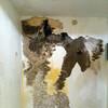 Arreglo humedades en paredes y techo por filtracion de agua