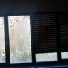 Cambio ventanas i puertas exteriores aluminio por pvc o aluminio rpt