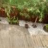 Restaurar jardin