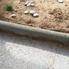 Asfaltar jardín de 25 metros cuadrados