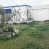 Echar hormigón impreso en un jardin  a ras de suelo 24 m cuadrados