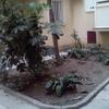 Presupuesto jardín comunidad