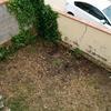 Solar jardín reparación muro