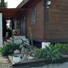 Desbrozar jardín/plantar cesped y especies tapizantes/mantenimiento