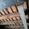 Informe técnico + reforma o restauración techo de bigas carcomadas ya reforzado anteriormente