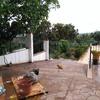 Reja metalica para patio