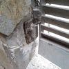 Reparar bisagras del porton garage