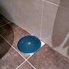 Desagüe de ducha atascado