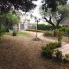 Pavimentar parte del jardín con hormigón impreso
