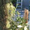Colocar rejas jardin