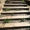 Cambio escalones de madera en jardín y puesta a punto
