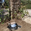 Intalar enchufe en un jardin