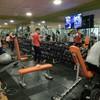 Tapizado maquinaria gimnasio