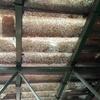 Presupuesto reemplazar tejadillo plástico (< 10m2)