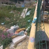 Proyecto y Construcción Piscina