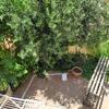 Eliminar pequeño jardín