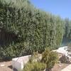 Otros Trabajos De Jardinería