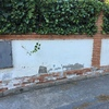 Reparación muro exterior