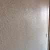 Quitar gotelé, alisar paredes y pintar en valencia
