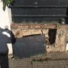 Reparación- pintura fachada
