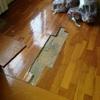 Reparar desperfectos en parquet