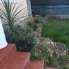 Paisajismo jardin