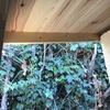 Instalación 2 puertas exterior aluminio
