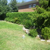 Realizar puesta a punto de jardín en becerril de la sierra