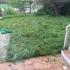Reformar todo el jardín
