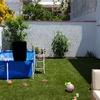 Mantenimiento pequeño jardin