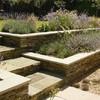 Proyecto casa jardin