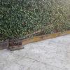 Rehacer escalera acceso zona piscina y jardinera